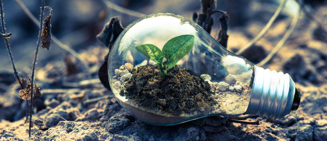 Ressourceneffizienz und Umweltschutz in der Industrie